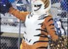 Tigers regain groove in Jarrell